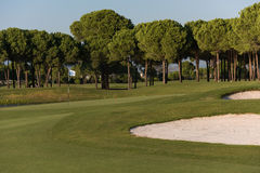 Golf course on sunny day Stock Photo