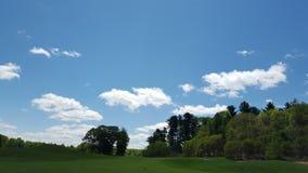 Golf course. Sunny golf course morning Stock Photography