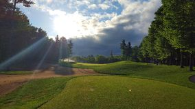Golf course. Sunny golf course morning Royalty Free Stock Images