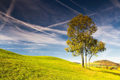 Golf course at sunrise. On the golf course in autumn in Prague Stock Images