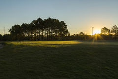 Golf course sunrise and landscaped grass.  Orlando. Golf in spa resort, morning on the golf, Orlando, Florida, USA Stock Photography