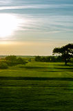 Golf course Stock Image