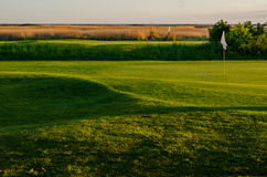 Golf course in sunset Royalty Free Stock Photography
