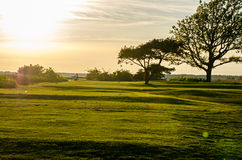 Golf course in sunset Royalty Free Stock Photos
