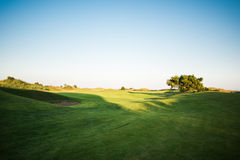 Golf course at sunset Royalty Free Stock Photo