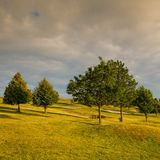 On a golf course at sunset. On a empty golf course at sunset Royalty Free Stock Photo