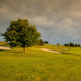 On a golf course at sunset. On a empty golf course at sunset Stock Photo