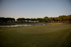 Golf course on sunset Stock Photos