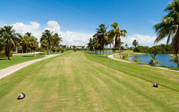 Golf Course Tee Box. Landscape view of a golf course tee box and fairway from Miami lined with palm trees and water hazards stock photos