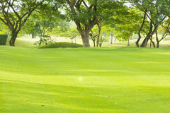 Golf course in Thailand Royalty Free Stock Image