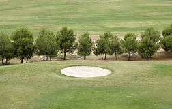 Golf course with trees Royalty Free Stock Photos