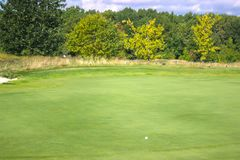 Golf course among the trees. With a golf ball Stock Images