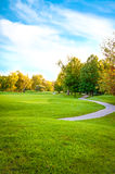 Golf Course Trees Royalty Free Stock Images