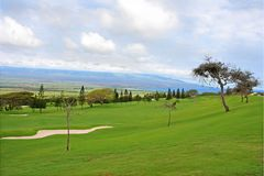 Golf course with trees and sandtrap. Golf course fairway with trees and sandtrap, with blue Pacific Ocean in the background Stock Image