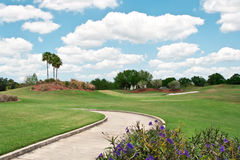 Golf Course in Tropics. With golfcart trail, fluffy white clouds, and flowers in foreground Stock Photos