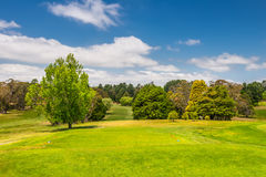Golf course. Very beautiful field. Stock Image