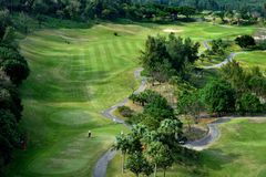 Golf course view Stock Images