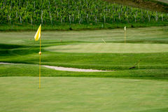 Golf course in vineyards with yellow flag posts and bunker Royalty Free Stock Images