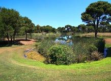 Golf course with water hazard. Belek stock photos