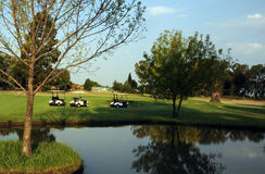 Golf Course Water Hazard Royalty Free Stock Image
