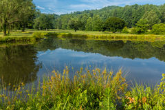Golf course water hazzard surrounded by flowers and trees Royalty Free Stock Images