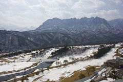 Golf course in winter. Del Pino Golf and Resort, Goseong, South Korea Royalty Free Stock Image