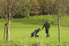Golf Course With A Player Royalty Free Stock Image