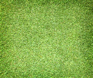 Golf Courses green lawn Stock Photography