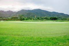 Golf courses on mountains. Green golf courses on nature and mountains Royalty Free Stock Photos