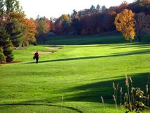 Golf court Stock Images
