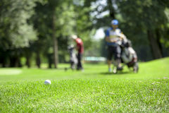 Golf couse detail Royalty Free Stock Photos
