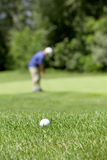 Golf couse detail Stock Photography