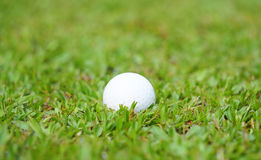 Golf crystal white ball on green grass in golf course Royalty Free Stock Photography