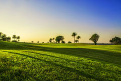 Golf curse. Landscape of setting sunlight on golf course Stock Images