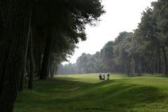 Golf dans le tessali de dei de riva Image libre de droits