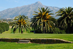 Golf de montagne Photo stock