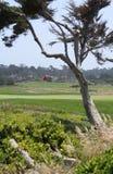 Golf de Pebble Beach Fotografía de archivo
