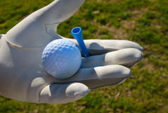 Golf dei guanti Immagine Stock