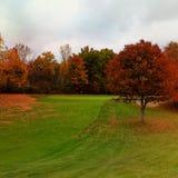 Golf del Michigan di caduta immagine stock