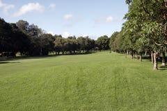 golf di corso Fotografie Stock