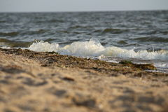 Golf die op de zandige kust van de Zwarte Zee, de Oekraïne rollen Royalty-vrije Stock Foto's
