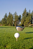 Golf Driver and Ball - Vertical Royalty Free Stock Photo