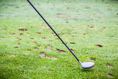 Golf driver club Royalty Free Stock Photography