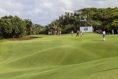 Golf Durban Country Club Stock Photos