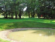 Golf en bosque fotografía de archivo libre de regalías