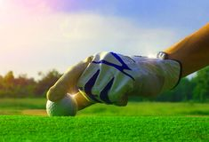 Free Golf Equipment, Check The Neatness Of The Iron, Put The Golf On The Red Wood Floor. Stock Photography - 146032232