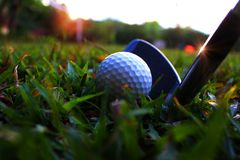 Put the iron on the golf down Beside the white golf ball In the green lawn to hit. Golf equipment in the green field/Golf equipment Many pieces in a bag royalty free stock photos