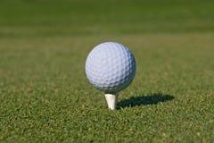 golf för 01 boll Arkivbild