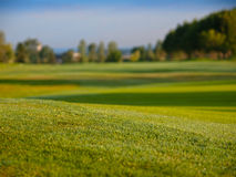 Golf fairway. Ground from view royalty free stock images