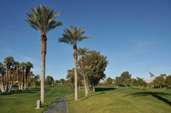 Golf fairway with cart path and palm trees. A golf cart path down a fairway is near palm trees Stock Photography